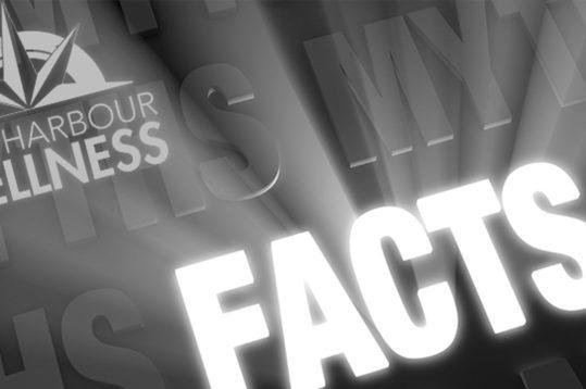 MYTHS_FACTS_2-539x358_b8a0354899569ea9e6ac8fa4c1143b97