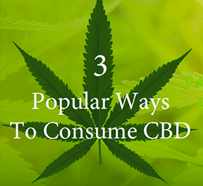 3 Popular Ways to Consume CBD